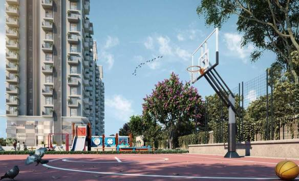 Godrej air nxt basketball